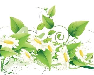 エレガントな花の背景 Elegant Floral Vector Background