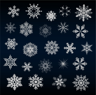 雪の結晶のイラスト A VARIETY OF BEAUTIFUL SNOW VECTOR イラスト素材1