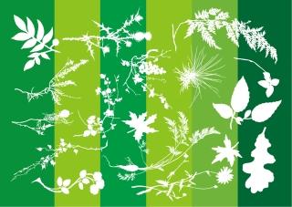 自然の植物のシルエット Plants Silhouettes Nature Graphics イラスト素材