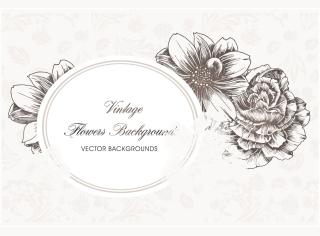 花びらの線画で飾るテキスト スペース line art flowers pattern background イラスト素材