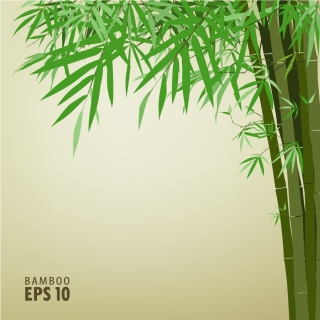 緑の竹の背景 green bamboo background text template イラスト素材
