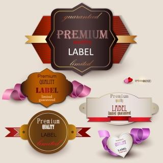 流行の美しい高級ラベル デザイン trend beautiful premium labels design イラスト素材