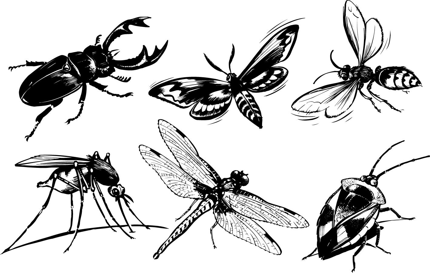 モノクロの昆虫素材 monochrome insect vector イラスト素材 | illustpost