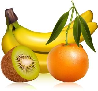 瑞々しいフルーツ Fruits bananas kiwi orange leaf green leaf vector イラスト素材