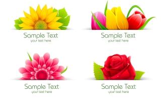 美しい花弁とテキストスペース Beautiful flowers petals イラスト素材