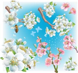 桃の花 Fine peach petals flowers イラスト素材