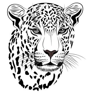 虎の白黒イラスト tiger picture vector イラスト素材