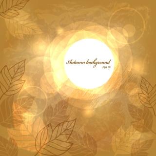 木の葉のラインアートの背景 Beautiful leaves lines halo background イラスト素材