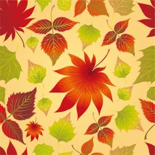 鮮やかな紅葉の背景 background Autumn Leaves イラスト素材