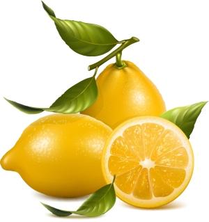 写真のようにリアルな新鮮なレモン real fruit fresh lemon イラスト素材