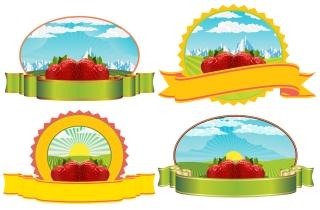 果物をテーマにしたラベル fruit theme label イラスト素材2