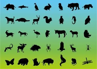 野生動物のシルエット Wildlife Animal silhouettes イラスト素材