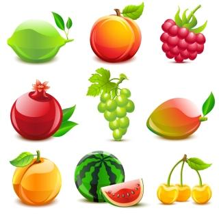 瑞々しく光る果物 crystal fruit vector イラスト素材