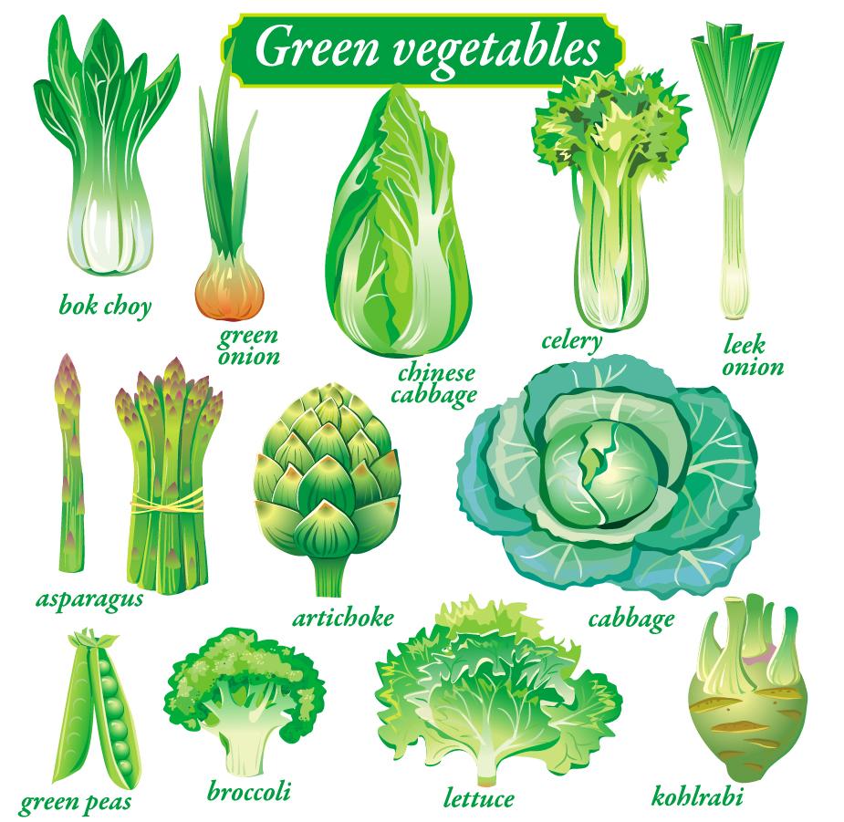 野菜のクリップアート Vegetables Vector イラスト素材 Illustpost