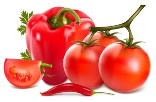 リアルな新鮮野菜のクリップアート nature realistic vegetables vector イラスト素材50