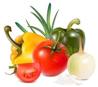 新鮮な野菜のクリップアート vegetables vector イラスト素材