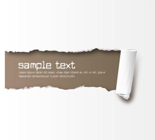 破れた紙のテキストスペース torn paper text space vector イラスト素材