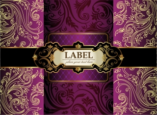豪華な帯付き装飾の表紙デザイン Luxury Decorative Covers イラスト素材