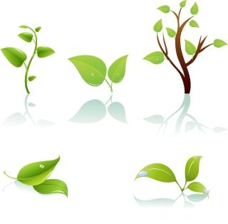 透明感のある影付きの木の葉 plant Green tree and leaf イラスト素材