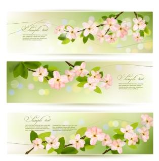 美しい花を咲かせた樹のバナー flower green banner background イラスト素材